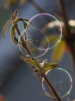 Soap Bubble, Light, Ease, Reflection