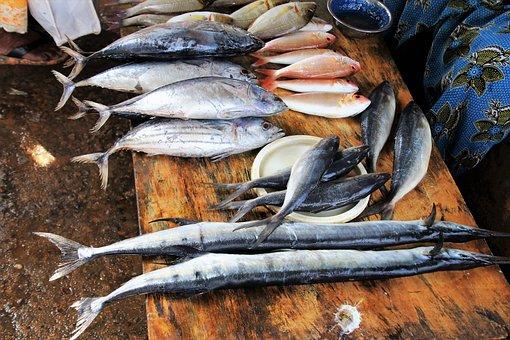 Fish, Marine, Fish Market, Seafood, Sea, Eating, Nature