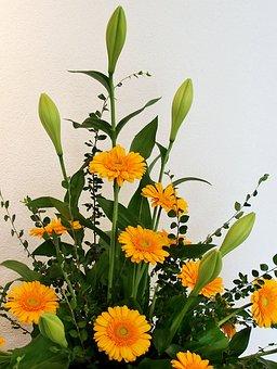 Gerbera, Yellow, Floral Arrangement, Arrangement