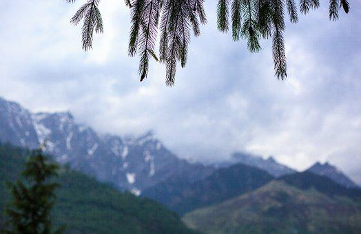 Mountain, Tree, Nature, Sky, Travel, Panoramic