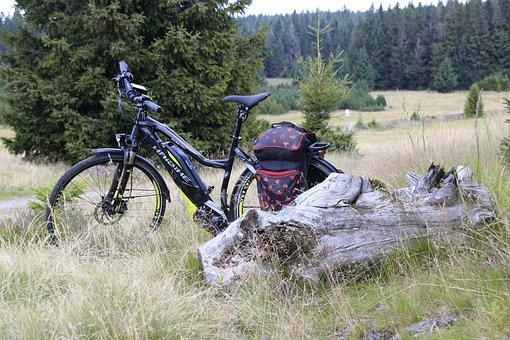 Nature, Grass, Summer, Wheel, Tree, Haibike, Bike Ride