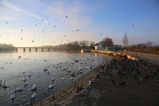 Waters, Nature, Winter, River, Horizontal, Panorama