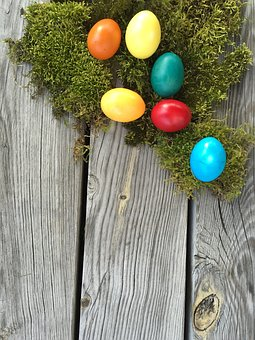 Woods, Wood, Background, Easter, Easter Eggs