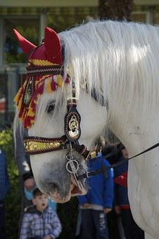 Horse, Decorated, Animal, Ride, Procession