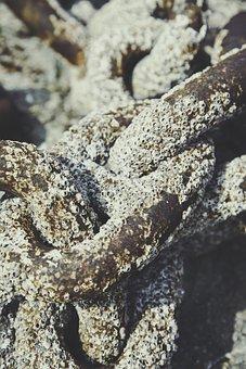 Mussels, Chain, Deposit, Lake, Ocean, Port, Sea, Water