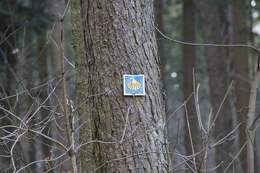 Jakobsweg, Scallop, Directory, Shield, Trail