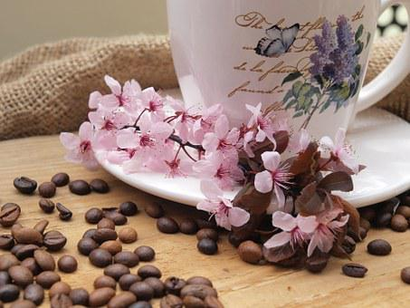 Coffee Beans, Coffee, Teacup, Time For Coffee, Flowers