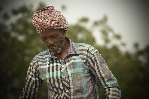 Farmer, Old, People, Adult, Man, Portrait, Outdoors