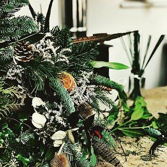 Nature, Leaf, Flora, Decoration, Tree, Christmas