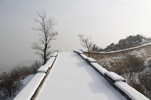 Winter, Snow, Cold, Tree, Nature