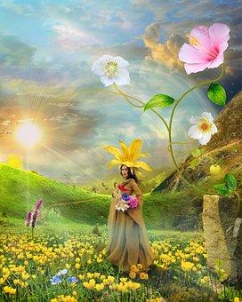 Flower, Nature, Plant, Summer, Field, Nice, Bright, Sun