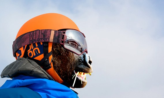 Outdoors, Helmet, Sport, Competition, Winter, Nature