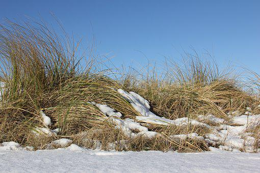 Nature, Winter, Snow, Landscape, Cold, Dunes, Snowy