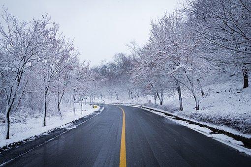 Road, Snow, Winter, Wood, Lane, Scenery, Nature