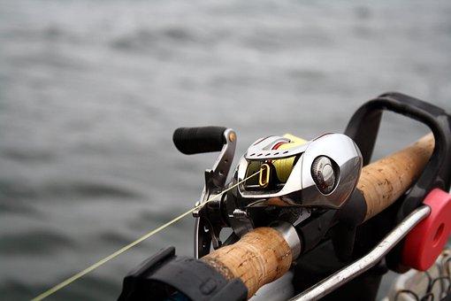 Water, Activity, Sport, Fishing, Daiwa, Baitcast, Reel