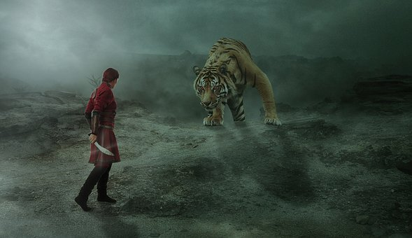 Human, Nature, Tiger, Courage, Risk, Gloomy