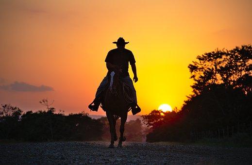 Horse, Cowboy, Silhouette, Summer, Nature, Sky