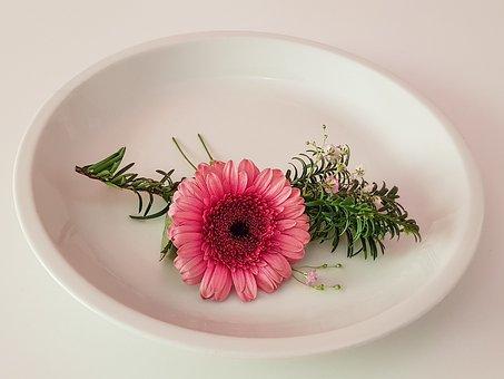Table Decoration, Gerbera Flower Pink, Flower