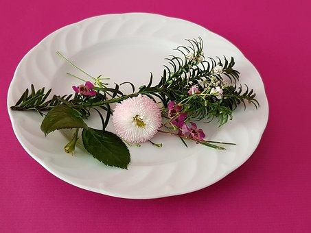 Table Decoration, Flower, Belli Pink, Gypsophila