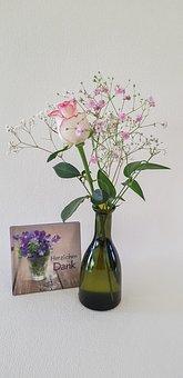 Rose, Gypsophila, White Pink, Flower, Plant, Leaf
