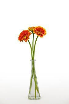 Chrysanthemum, Bouquet, Flowers, Bloom, Vase