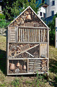 Bughouse, Design, Wood, Family, Wooden, Architecture