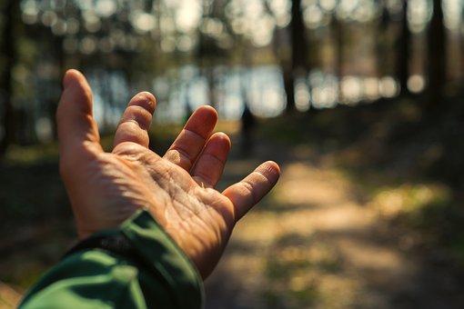 Nature, Sun, Human, Adult, Hand, Finger, Close, Keep