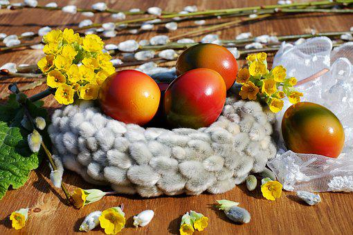 Easter Eggs, Egg, Bio, Colored, Colors Of Nature