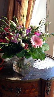 Flower, Vase, Pot, Decoration, Flora