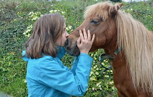 Girl Shetland Pony, Kisses Pony Girl, Kisses, Kiss