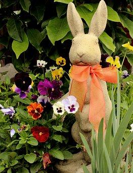 Flower, Garden, Plant, Leaf, Floral, Easter Bunny
