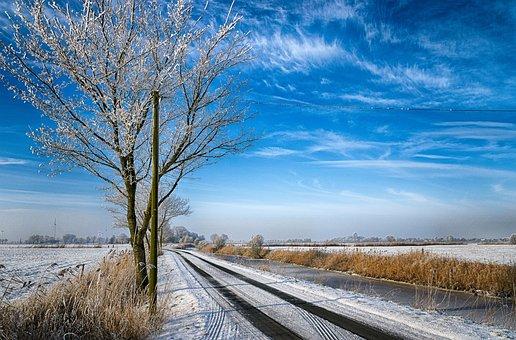 Nature, Tree, Landscape, Winter, Season, Frosty, Icy