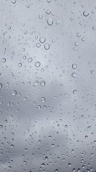 Rain, Wet, Pearl, Open, Water Drop, Droplet, Purity
