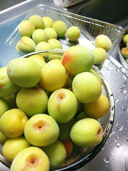 Fruit, Freshness, Plum, High School Plum