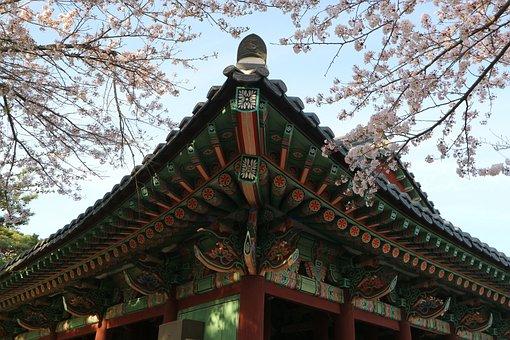 Shrine, Top, New, Sanctuary