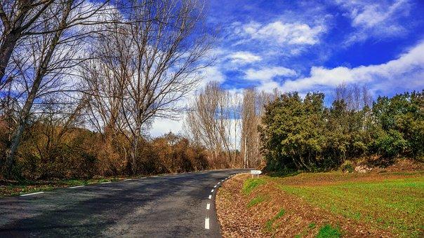 Transit, Communication, Tree, Nature, Road, Landscape