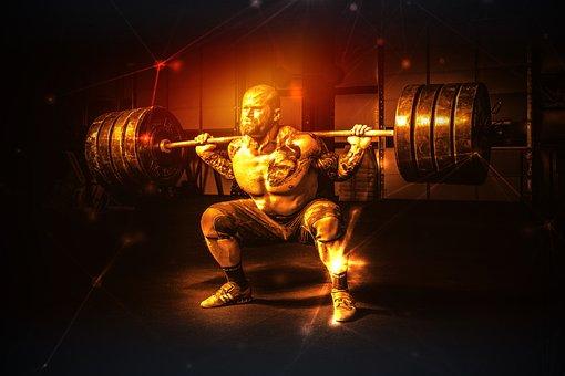 Man, Weight Lifter, Muscular, Strength, Bodybuilding