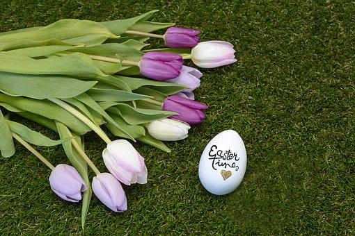 Easter, Easter Egg, Tulips, Happy Easter, Decoration