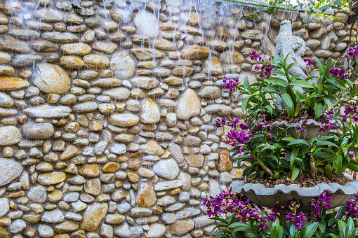 Stone, Nature, Default, Plant, Texture, Arrangement