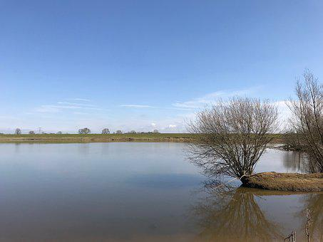 Floodplain, Nature, River, Landscape, No Person