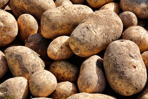 Pile, Food, Background, Potato, Batch, Healthy