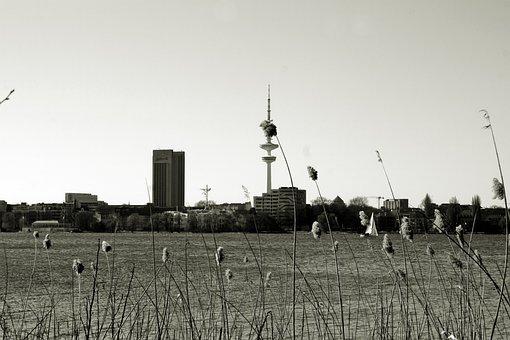 Alster, Hamburg, Hanseatic City Of Hamburg