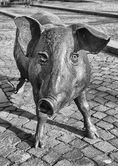 Pig, Bronze Statue, Sow, Luck, Pig Snout