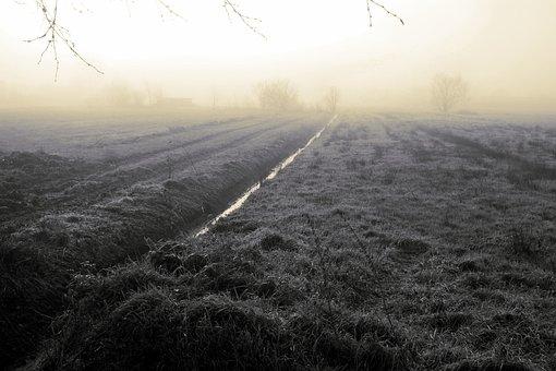 Fog, Nature, Wide, Moor, Teufelsmoor, Vörder Country