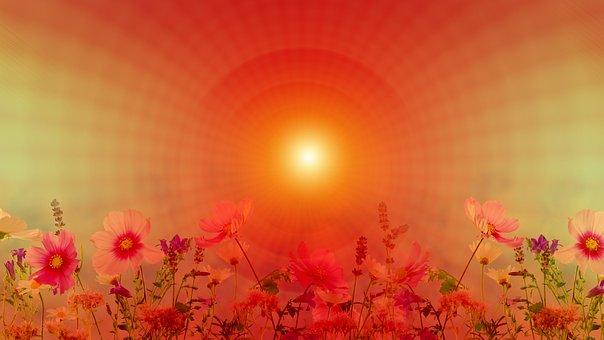 Meditation, Orange, Mood, Relaxation, Wellness