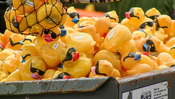 Rubber, Ducky, Winner, Summer, Many, Color