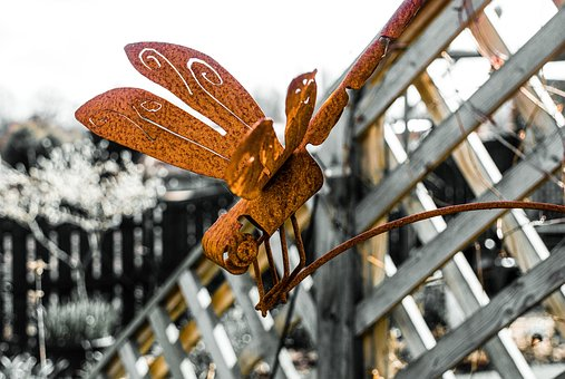 Nature, Dragonfly, Metal, Rust, Insect, Fly, Garden