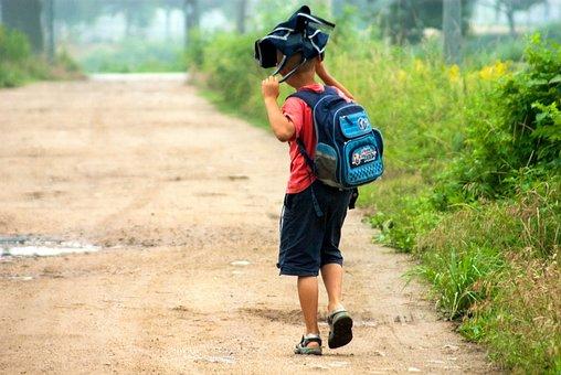 Children, Summer, School, Boy, Children's, Morning