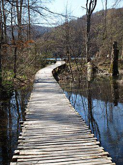 Wood, Nature, Water, Tree, Landscape, Plitvice Lake