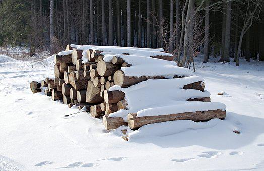 Pile Of Wood, Tree, Fuel, Winter, Snow, Cold, Frost